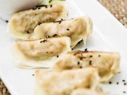 Empanadilla japonesa de pollo y verdura